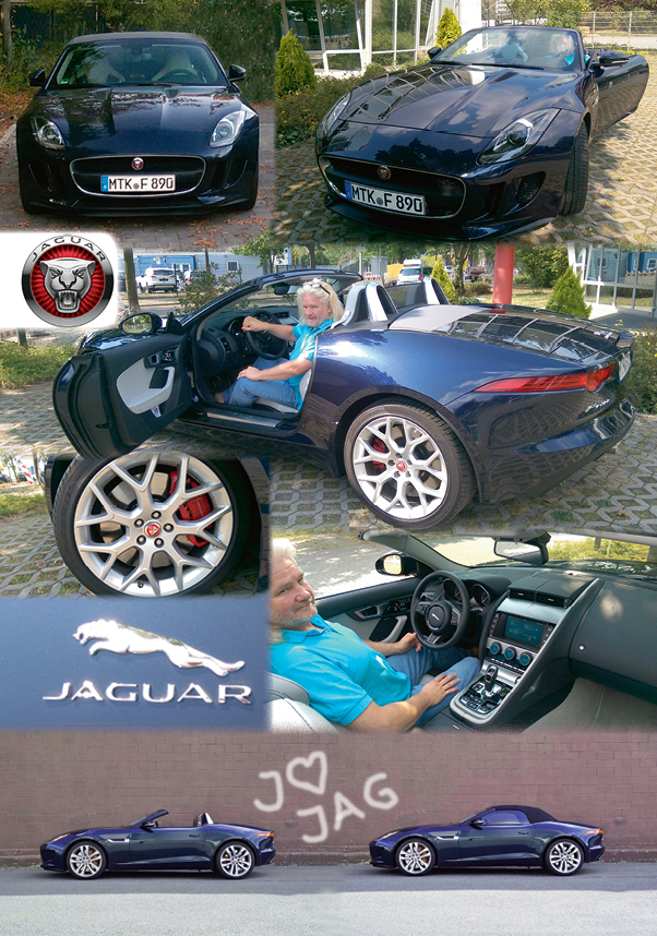 Jaguar Fun-Typ